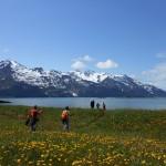 Alaska Chilkat State Park