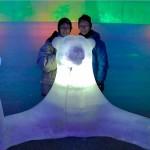 Alaska Ice Museum