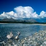 Alaska Noatak National Preserve