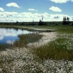 Alaska Selawik National Wildlife Refuge