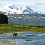 Alaska Stan Price State Wildlife Sanctuary