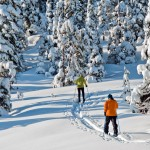 Alaska cross country hiking