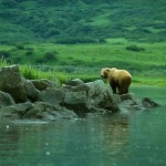 Alaska Peninsula National Wildlife Refuge