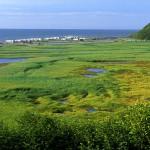 Alaska Deep Creek State Recreation Area