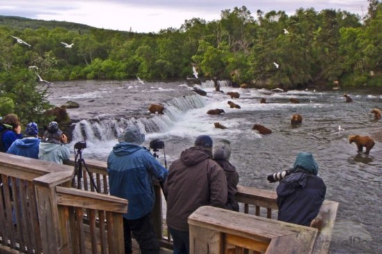 Alaska Katmai National Park and Preserve