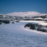 Alaska Yukon Delta National Wildlife Refuge